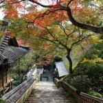 大興善寺、杵築城、熊野磨崖仏